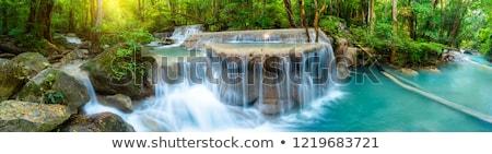woodland waterfall in the spring stock photo © wildnerdpix
