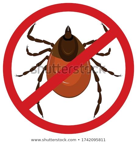 ticks warning sign Stock photo © flipfine