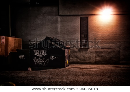 back alley at night time stock photo © gemenacom