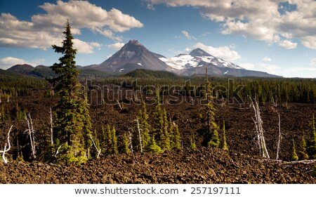 Mckenzie Pass Three Sisters Cascade Range Ancient Lava Field Stock photo © cboswell