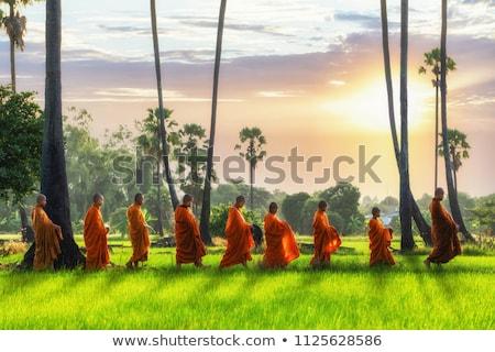 Lectura sagrada escritura monasterio libros clase Foto stock © nilanewsom