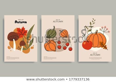autumnal mushrooms collection stock photo © jonnysek
