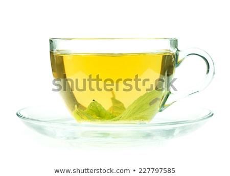 yeşil · çay · fincanı · yalıtılmış · beyaz · çay · kahvaltı - stok fotoğraf © tetkoren