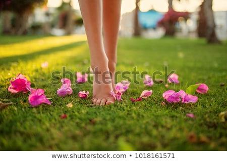 női · láb · fű · tavasz · szexi · nap - stock fotó © Paha_L