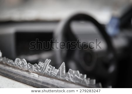 broken window transparent netting Stock photo © sirylok