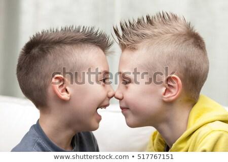 портрет · мало · братья · два · детей - Сток-фото © giulio_fornasar