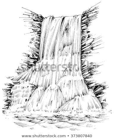 çağlayan dere şelaleler bereketli avustralya çalı Stok fotoğraf © lovleah
