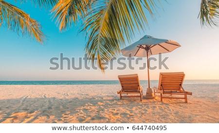 Férias de verão praia férias vetor arte mar Foto stock © vector1st