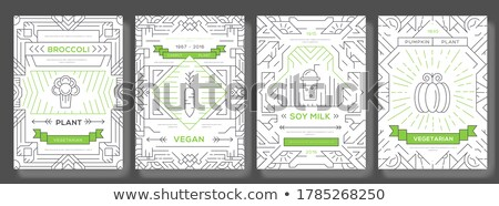 Vegan vector brochure cards set. Vegetable template of flyear, magazines, posters, book cover, banne stock photo © Linetale