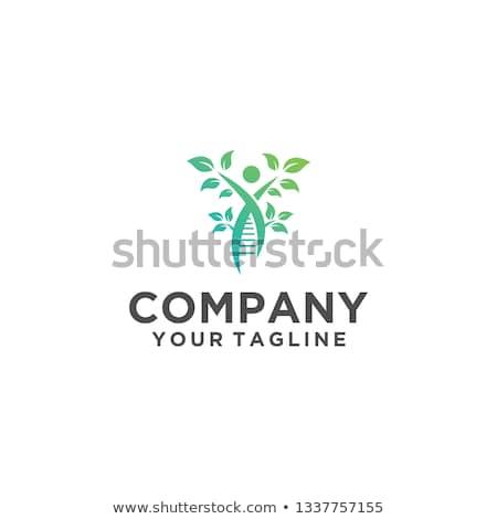 スパイラル 緑色の葉 ロゴ ベクトル 抽象的な ビジネス ストックフォト © blaskorizov