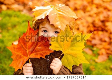 Família feliz bordo folhas outono parque família Foto stock © dolgachov