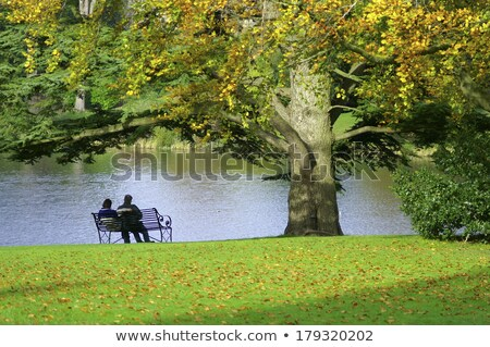 Autumn Park with Pond, Couple and Woman on Bench Stock photo © robuart
