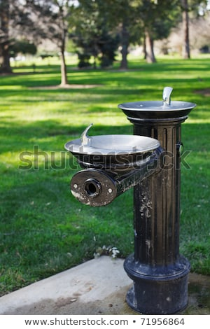 Dual black drinking fountain Stock photo © bobkeenan