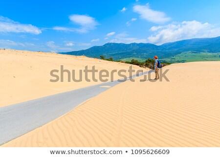 jonge · vrouw · rugzak · permanente · kust · meer · berg - stockfoto © denbelitsky
