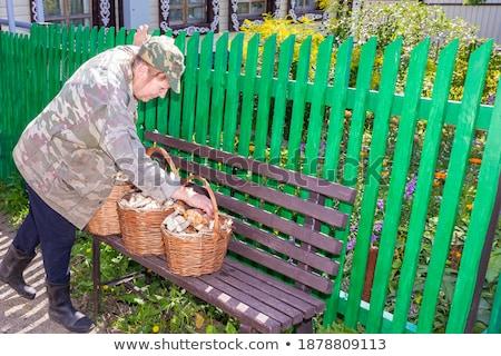 village woman with a basket of mushrooms Stock photo © studiostoks