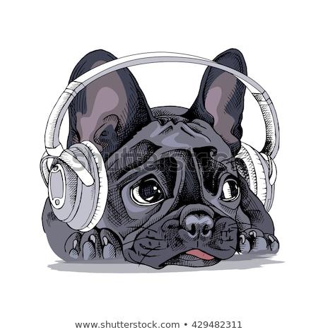 Stockfoto: Lying Listening Music Device Headphones Vector
