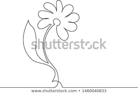 Livre de coloriage Daisy fleur image livre visage Photo stock © clairev