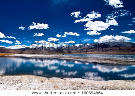 Salt lake Tso Kar in Himalayas. Ladakh, India Stock photo © dmitry_rukhlenko