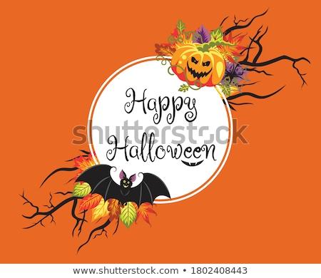 White circle with text Happy Halloween and angry smile. Stock photo © oksanika