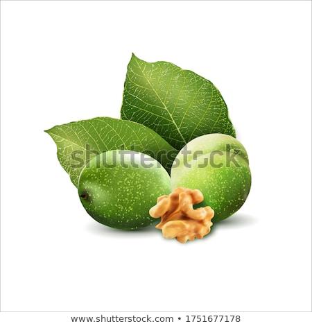 green walnuts stock photo © konturvid