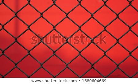 red fence Stock photo © ozaiachin