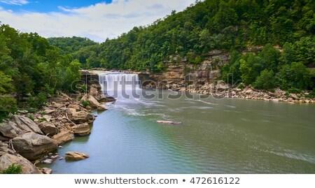 cumberland falls stock photo © stephaniefrey