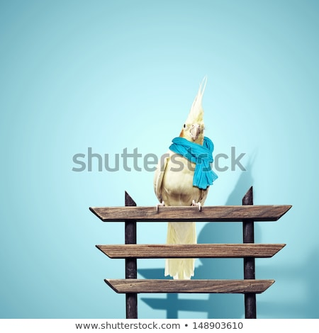 Funny Parrot. Sad. Stock photo © RAStudio