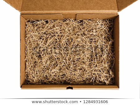 shredded paper stock photo © stocksnapper