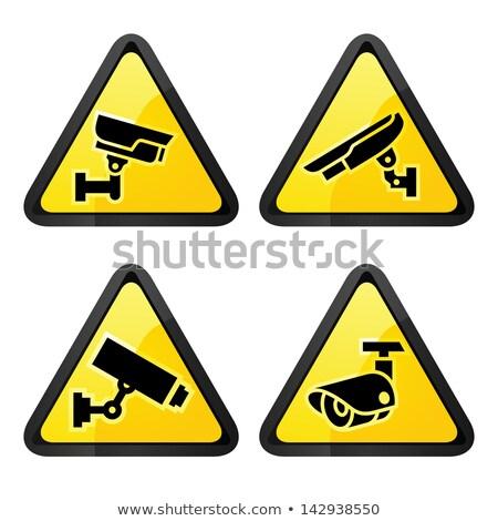Cctv establecer símbolo cámara de seguridad resumen Foto stock © Ecelop