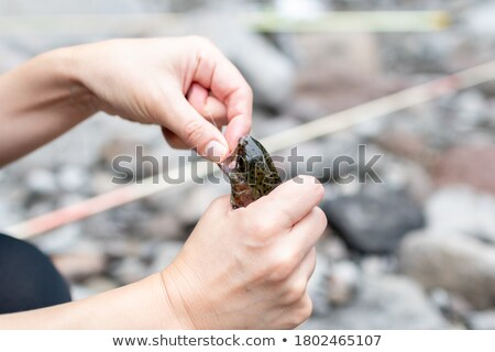 Fisherman stuck in river Stock photo © photography33