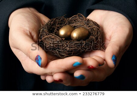 Managing Your Nest Egg Stock photo © Lightsource