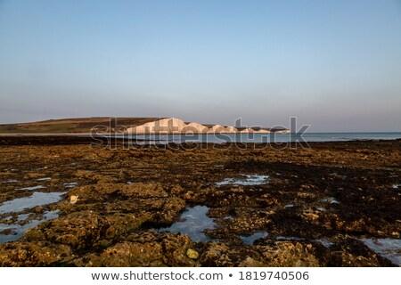 Stok fotoğraf: Güzel · sahil · altın · plaj