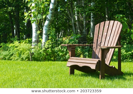 Lounge chair in backyard Stock photo © zzve