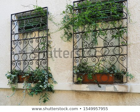 Two windows with railing Stock photo © zzve
