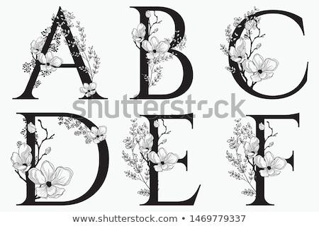 Klasszikus virágmintás ábécé c betű sziluett antik Stock fotó © Ray_of_Light