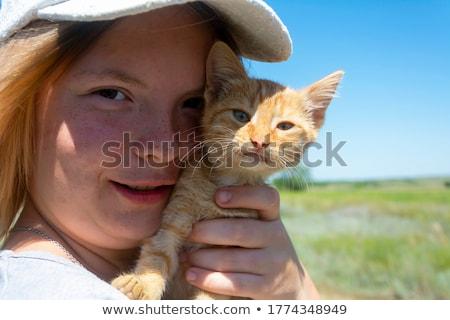 macska · mosás · kép · űr · fehér · kiscica - stock fotó © meinzahn