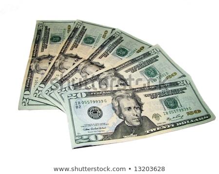 Yirmi dolar fatura cüzdan para kâğıt Stok fotoğraf © njnightsky