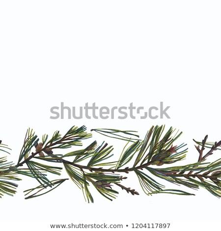 東部 白 カラフル カード テンプレート イースター ストックフォト © Anna_leni