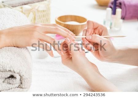 paznokci · technik · klienta · manicure · salon · piękności · kobieta - zdjęcia stock © wavebreak_media