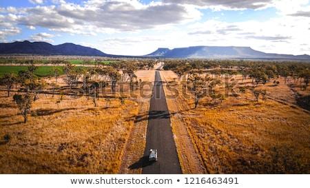 Outback Highway Australia Stock photo © roboriginal