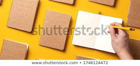 diariamente · nota · livro · isolado · branco · negócio - foto stock © vapi
