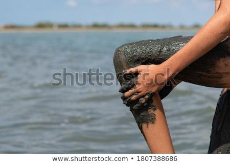 湖 · 塩 · 赤 · シルエット · 土地 - ストックフォト © alinamd