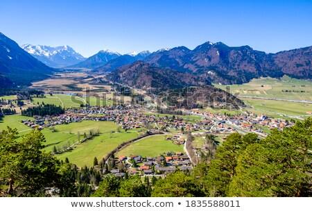 testtartás · Alpok · hegyek · fű · hegy - stock fotó © w20er