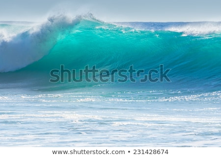 Stock photo: Waves breaking on the shore of Madeira