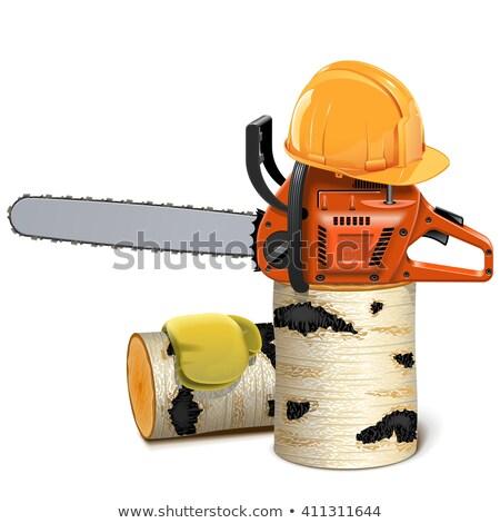 vector · construcción · herramientas · casco · aislado · blanco - foto stock © dashadima
