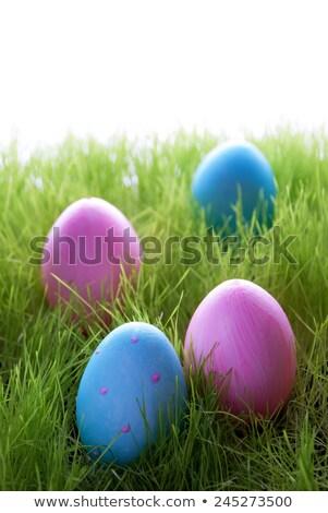 Four Easter Eggs In Grass Foto d'archivio © Nelosa