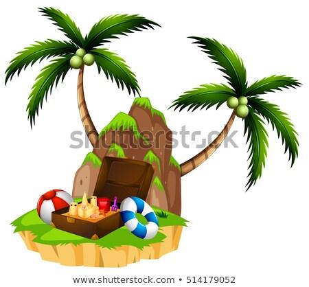 Ada iki hindistan cevizi ağaçlar evrak çantası örnek Stok fotoğraf © bluering