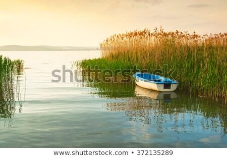 Belle coucher du soleil lac Balaton Hongrie bleu Photo stock © digoarpi