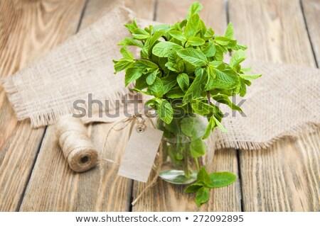 Stock fotó: Friss · menta · fehér · váza · desszertek · fából · készült