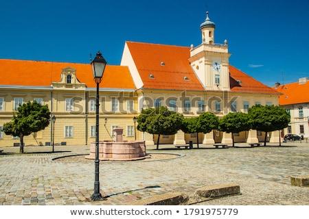 Cuadrados histórico ciudad región Croacia Foto stock © xbrchx